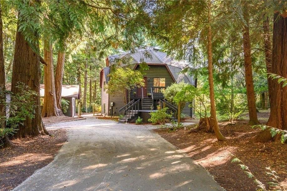 木々の中のドームハウス